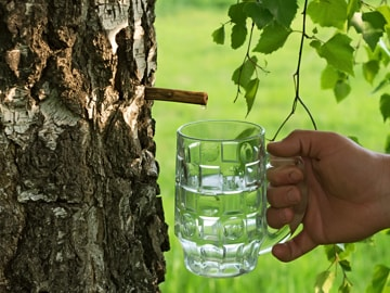 Berk-drinkwater